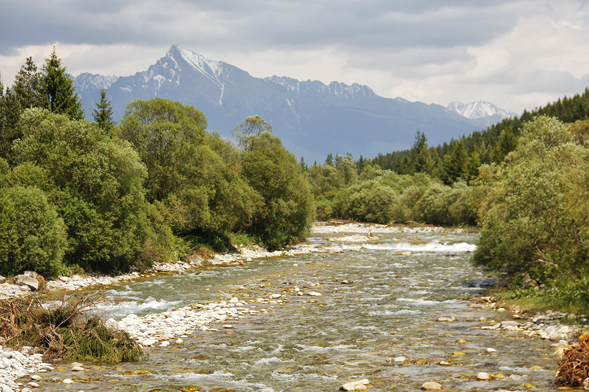 Best locations and rivers for flyfishing in slovakia for River fly fishing